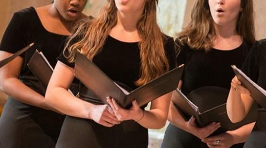 Coro Ludus Vocalis Bonamici